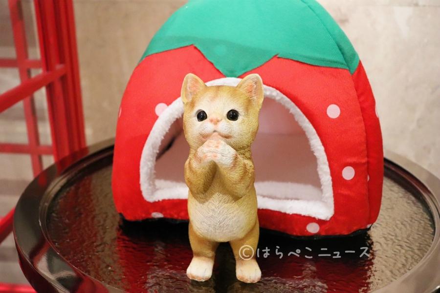 【潜入レポ】ヒルトン東京 いちごビュッフェ「ストロベリーCATSコレクション」猫とスイーツの癒し空間へ!