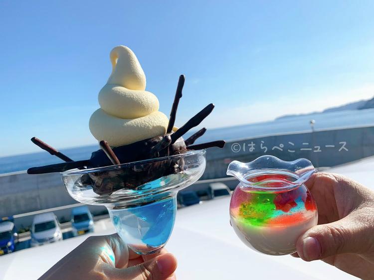 【実食レポ】「うにパフェ」雲丹入りソフトクリームにチョコがけシュー生地!小田原漁港プリンも!