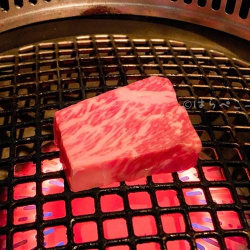 【実食レポ】『生粋』予約困難な人気焼肉店で6500円のお得なコースと3種のユッケ盛り合わせ!