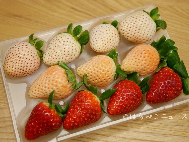 全種実食【いちご通販・お取り寄せまとめ】あまおうに黒いちご(真紅の美鈴)や白いちご!高級いちごギフトも
