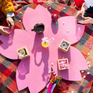 【桜ステイ・お花見宿泊プラン2021】SAKURAルームに花見酒!星野リゾートの花見こたつやさくらテラスも!