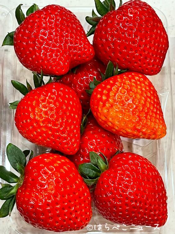 【実食レポ】新品種いちご『あまりん』特急Laviewで運んだ秩父産いちごを体験!楽天市場や通販でも!