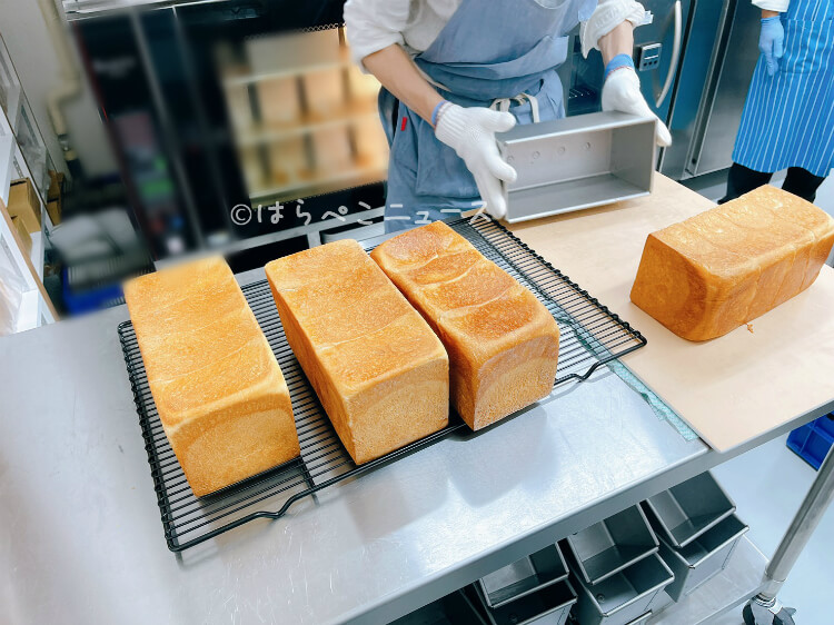 【実食レポ】『まさかナンパ』高級食パン専門店が大船に!ベーカリープロデューサー岸本拓也氏のプロデュース!